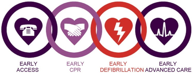 Miami CPR-AED Training & Certification Classes